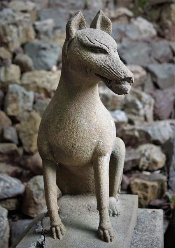 宇治上神社 狐