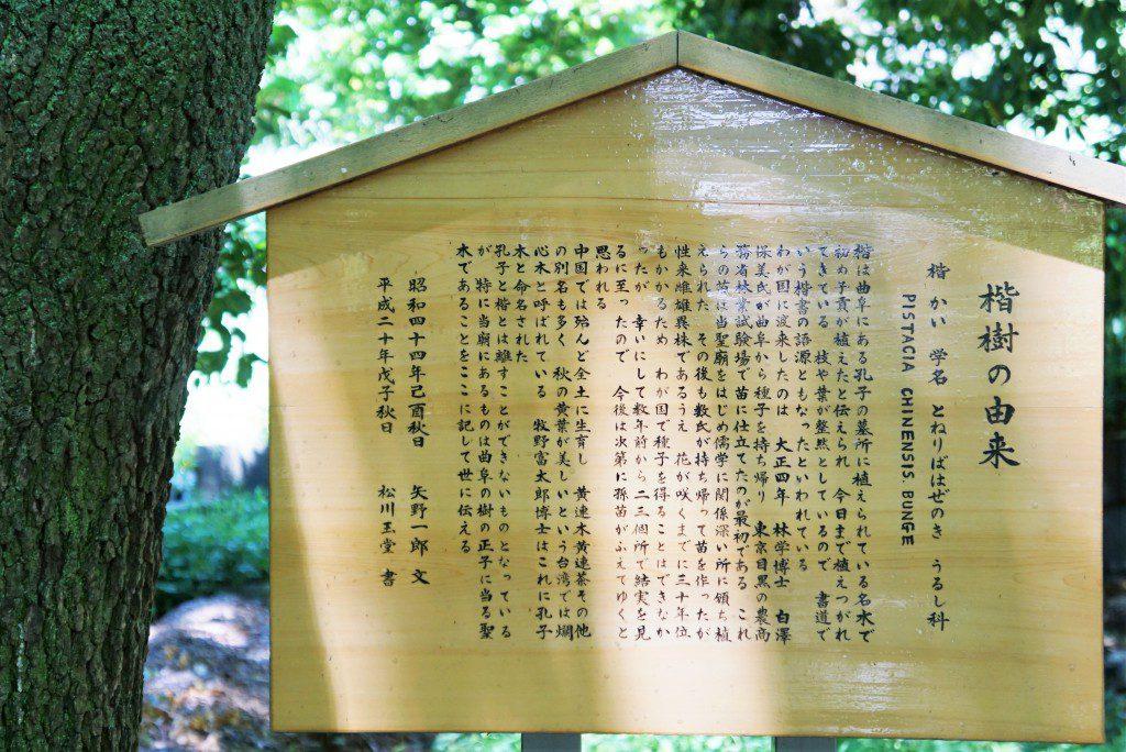 湯島聖堂楷の木の由来