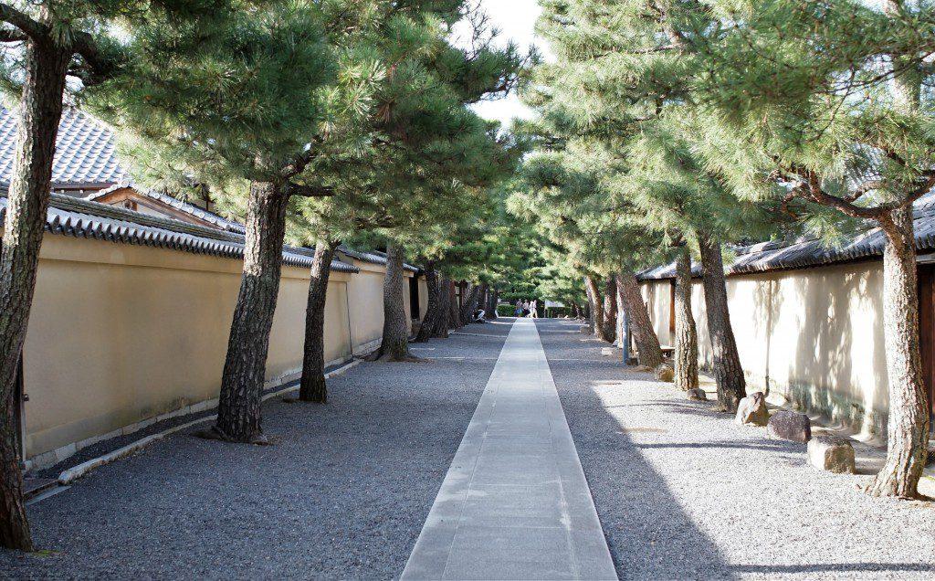 大徳寺 勅使門に至る道