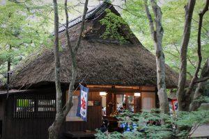 春日大社 水谷茶屋3
