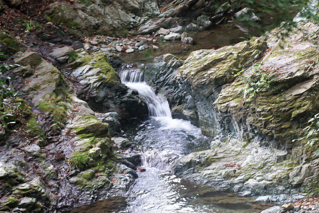 毛呂山町滝ノ入ローズガーデン近くの川