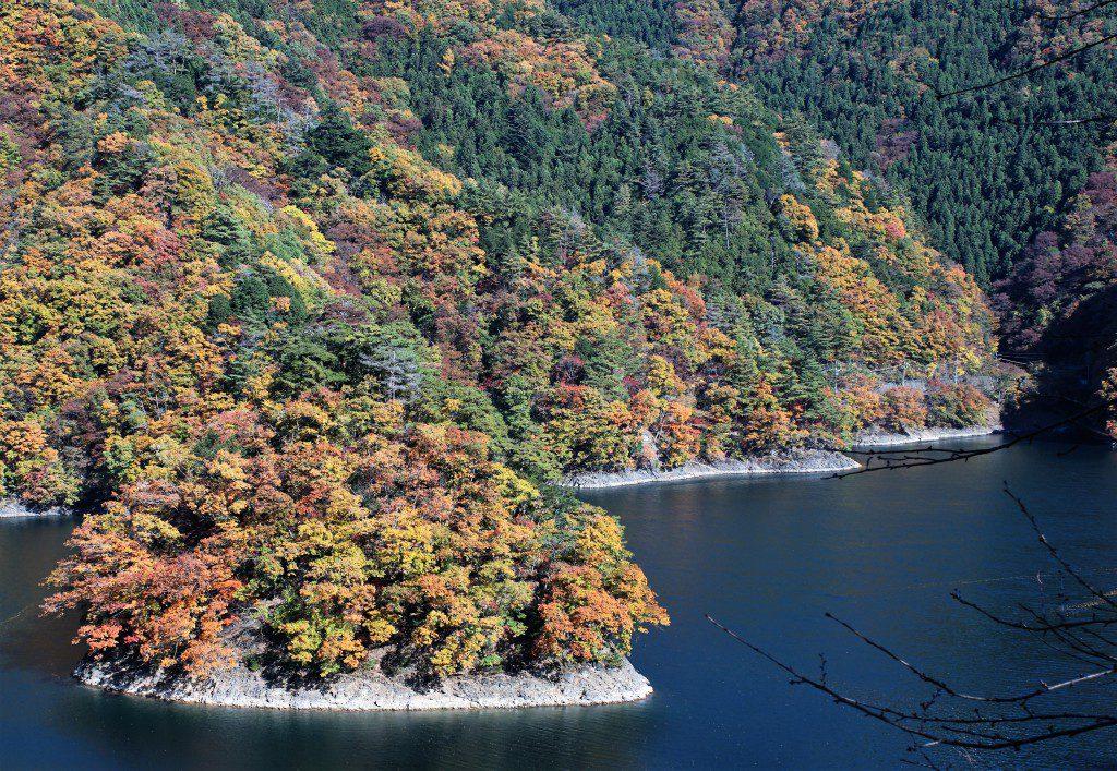 奥多摩湖 小河内神社からの紅葉