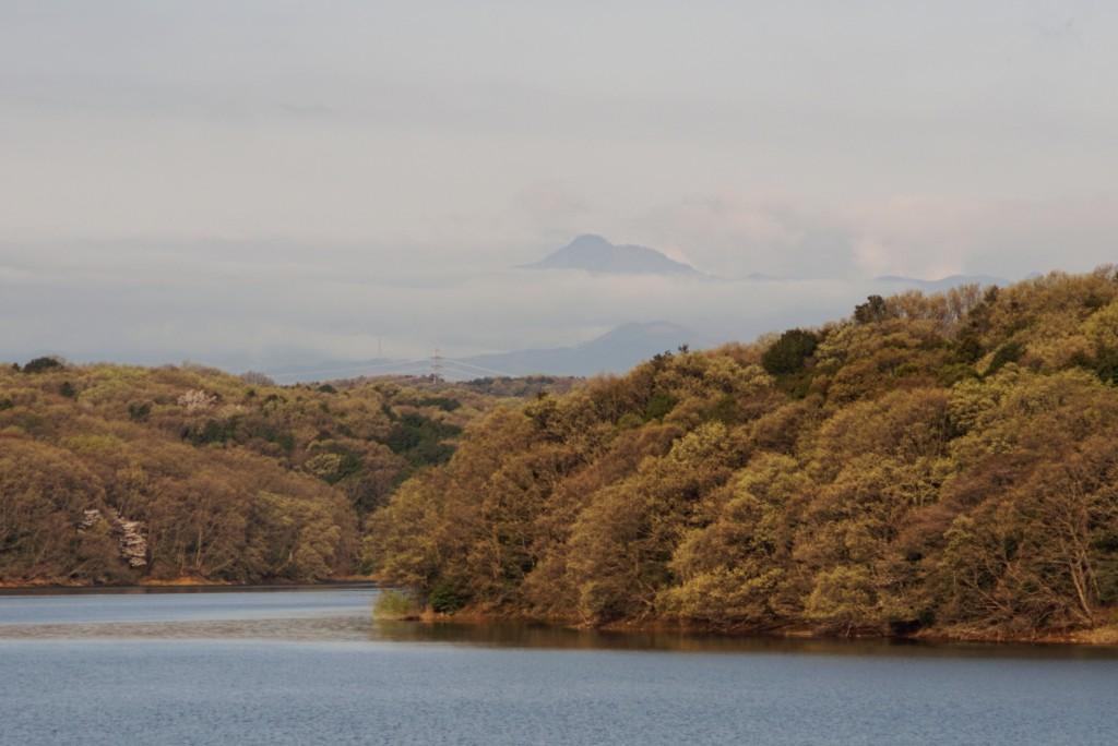 狭山湖からの大岳山