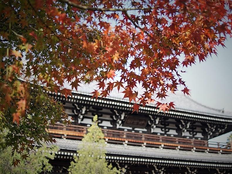 京都 東福寺 山門 紅葉
