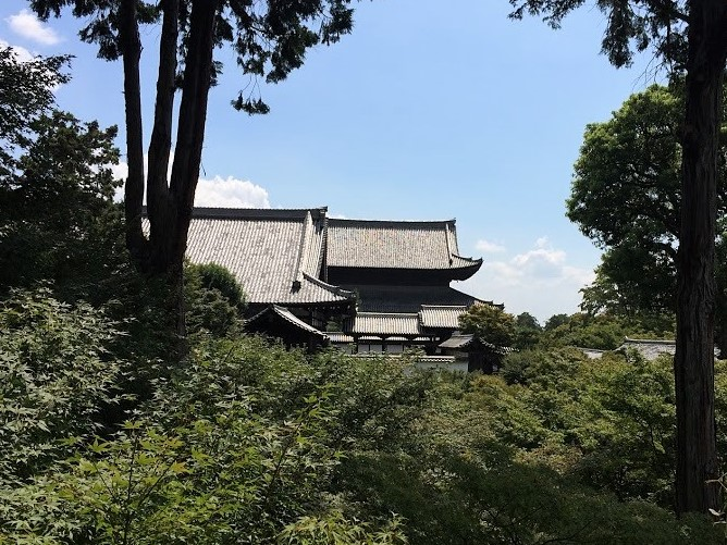 東福寺 夏