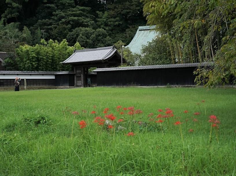 韮山 江川太郎左衛門