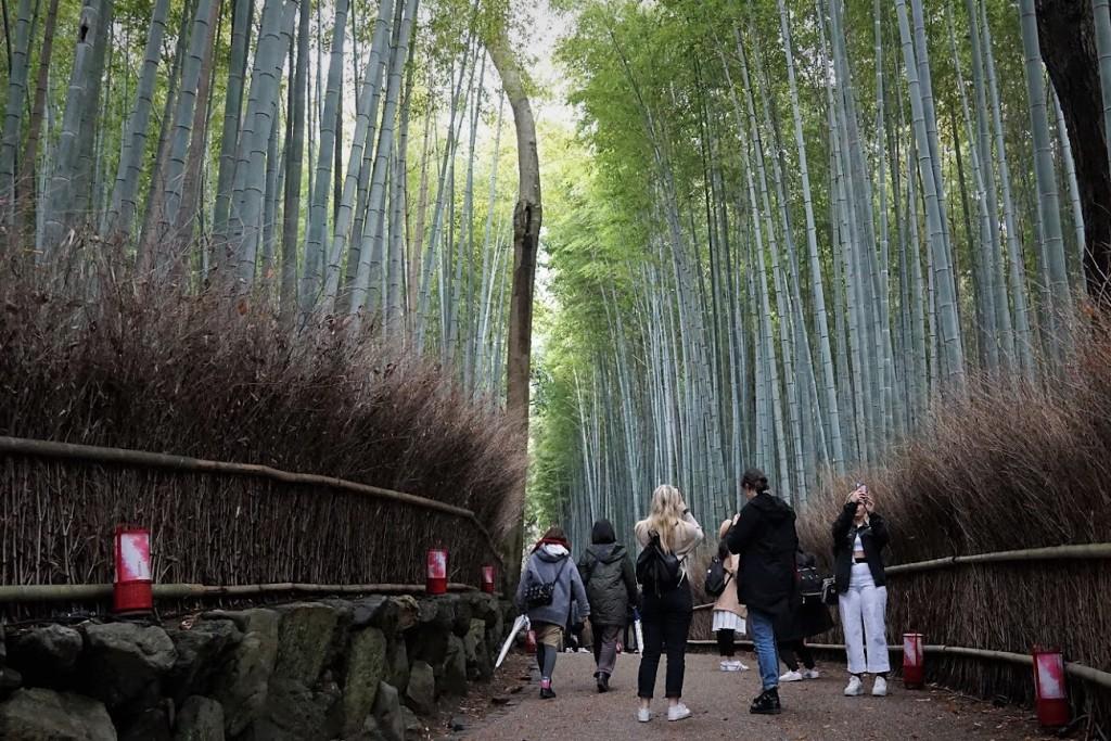 京都嵐山 竹の小径