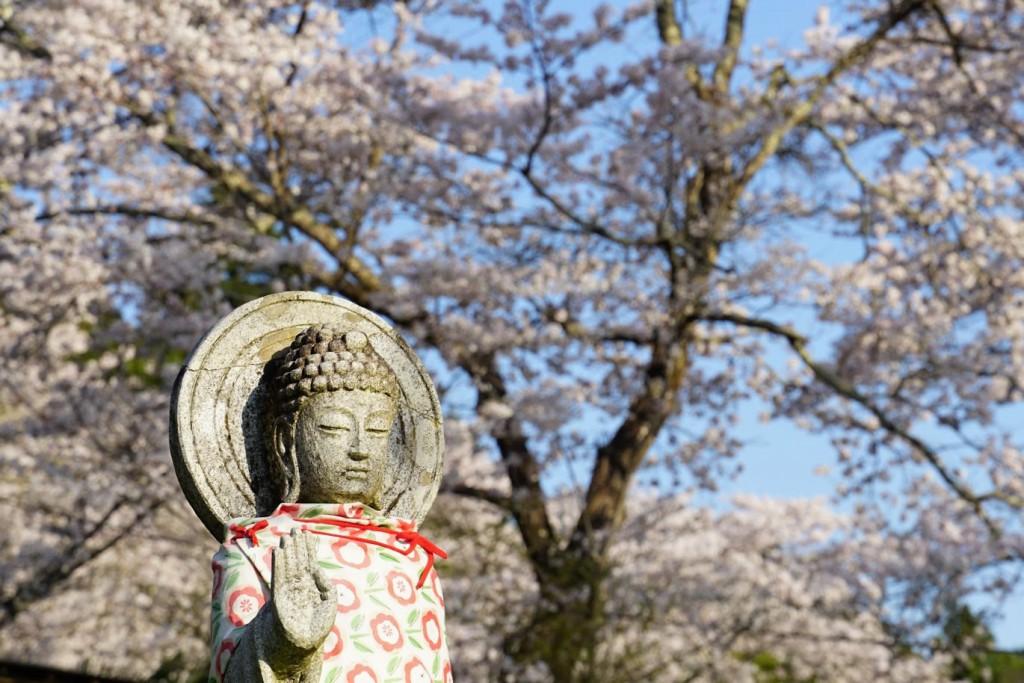 お地蔵さんと桜