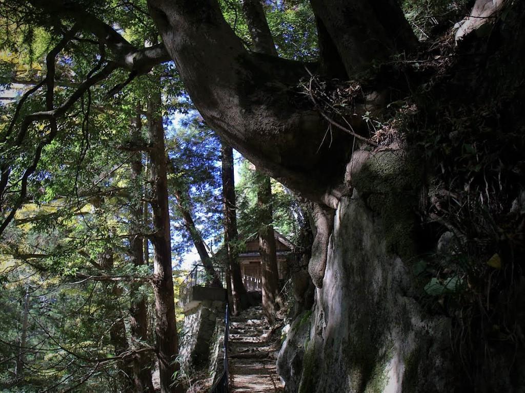 奥多摩 白髭神社 参道