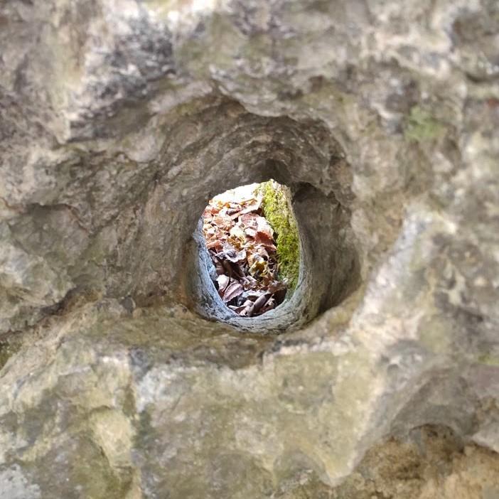 奥多摩むかし道 弁慶の腕抜き岩