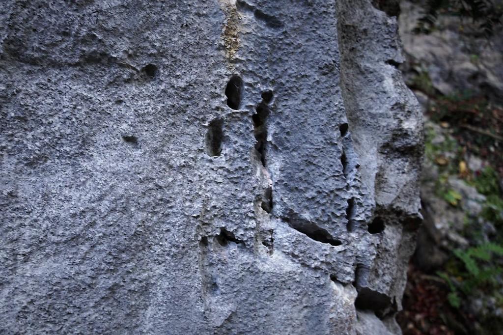 白髭の大岩